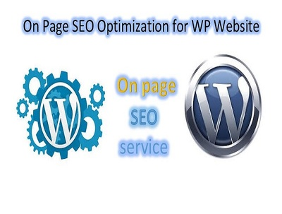 On Page SEO Optimization for WP Website