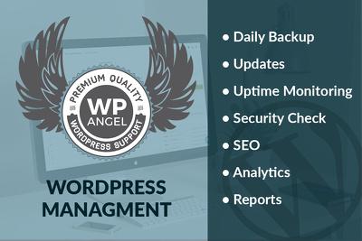 manage your WordPress website.