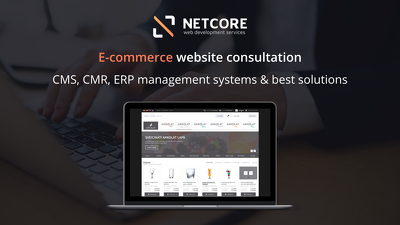E-commerce website development consultation