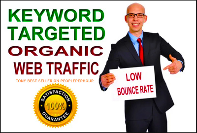 the Google White Hat Seo And Keyword Targeted Traffic