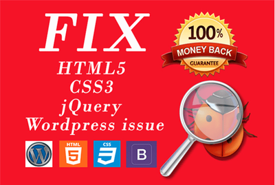 Get any Wordpress Issue/Problem fixed and one hour Customization