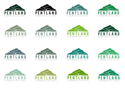 Design a Professional Logo and Provide 12 Colour Variations