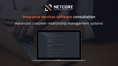Insurance services software and website development consultation
