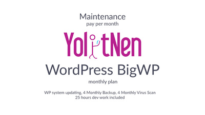 WordPress Maintenance BigWP (monthly plan)