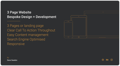 Design and develop a 3 page website or landing page