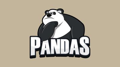 design a professional mascot and pet logo