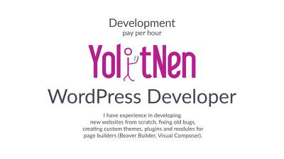 WordPress Developer (hourly, long-term)