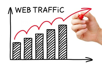 Send USA NICHE TARGETED Organic Traffic From Google