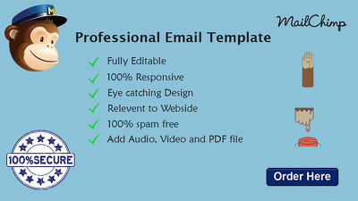 design Fully Professional Mailchimp Email Template