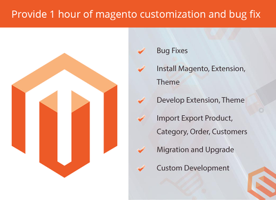 Provide 1 hour  magento customization and bug fix