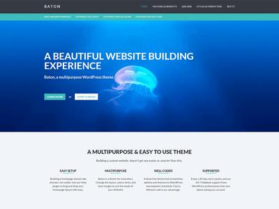 Creat SEO Wordpress Website Using DIVI Theme + Responsive.