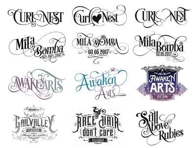 Design a custom logo in 3 versions