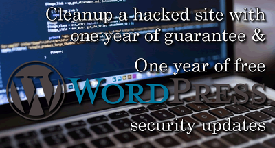 Cleanup a hacked Wordpress site with one year guarantee
