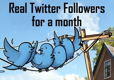 Do marketing, Manage and grow your Twitter account organically