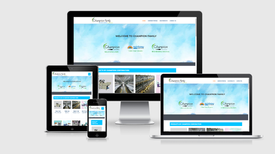 Design Responsive, SEO friendly WordPress Website