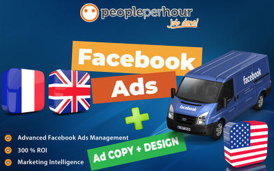 Provide Advanced Facebook  Advertising Consulting