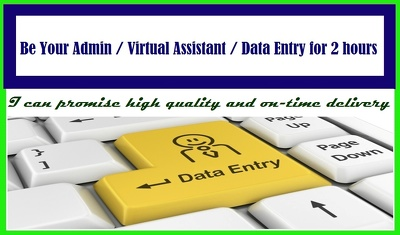 Be Your Admin / Virtual Assistant / Data Entry for 2 hours