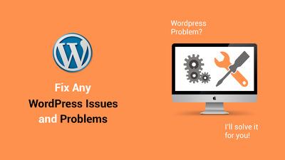 Fix Any WordPress Issue/Problem/Bugs