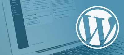 Fix all your WordPress issues (HTML, CSS, Plugins, Themes)