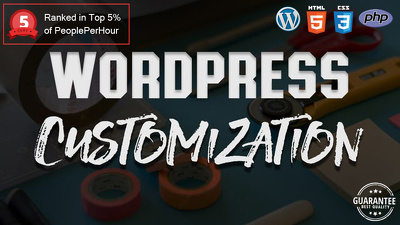 provide 1 hour Wordpress website customization