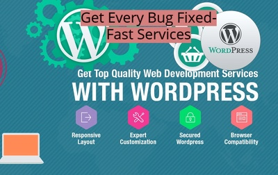 Fix any WordPress Website issue
