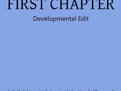provide a Developmental Critique for your novel's first chapter