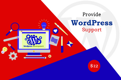 Provide 1 Hour WordPress Support