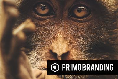 ★ #PBOnline- Complete Branding Suite ★