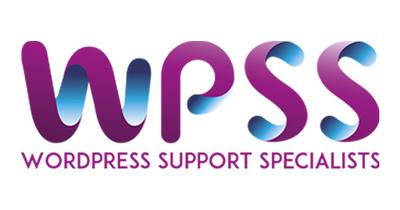 Fix any Wordpress Issues and Errors