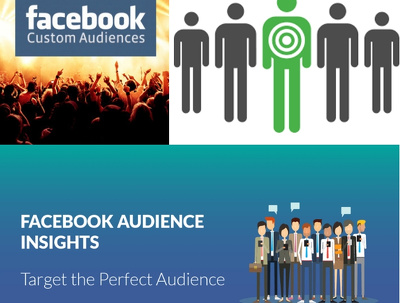 Highly Targeted Custom Audience For Your Facebook Ads
