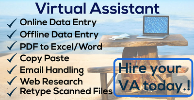 Be your Virtual Assistant as data entry, proofreading,copy paste