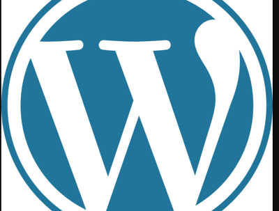 Create  a 5 page  wordpress professional website