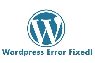 Solve Wordpress errors for you