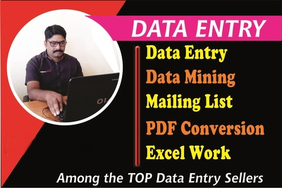 Do Expert Data Entry
