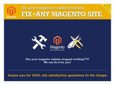 Do Magento bug fixing /intigration/upgrade/custome development