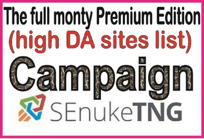 Top SEO Campaign - The full monty Premium Edition -high DA sites