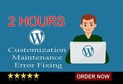 2 hours of WordPress customization, maintenance & error fixing