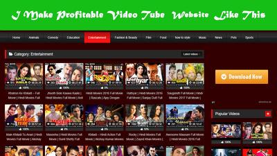 Make profitable video-tube WordPress website