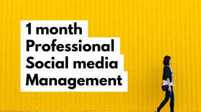 Professionally manage one social media account INCLUDING content