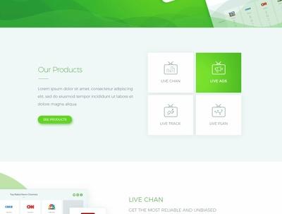 Professional Wordpress Website | Responsive + SEO & GDPR Ready