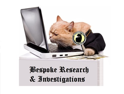 Offer 4 hours of bespoke online investigation/research work