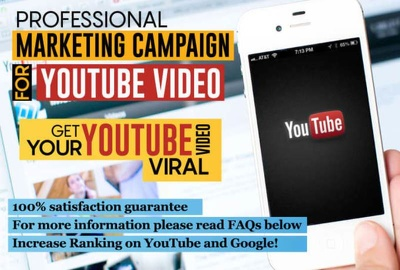 I Will Rank Your Youtube Video To Get Organic Views