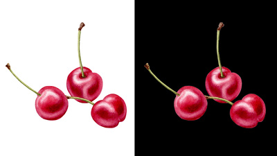 Illustration of realistic looking fruit