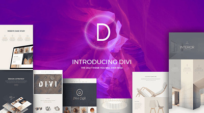 Develop Hi-Quality Website using Divi Theme + 1 yr FREE HOSTING