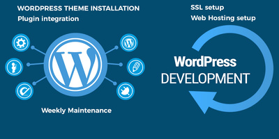 Wordpress theme installation, web hosting setup, web design