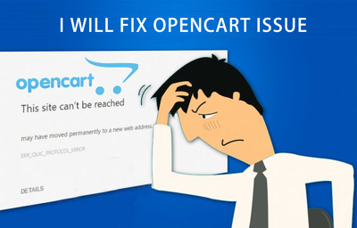 Customize and fix your opencart plugin to improve its quality