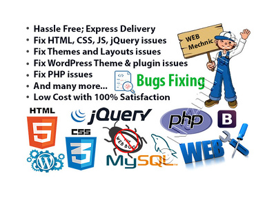 Solve any web site Bug Fixing