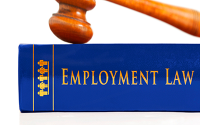Provide a Bespoke Employment Contract & Staff Handbook for your