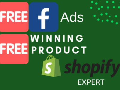 Create Shopify Dropshipping Store that Convert Into Sales