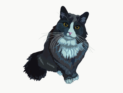 Draw your pet or any other animal in vector
